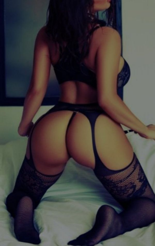 Find New Escorts Every Day